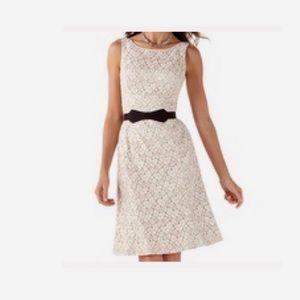 White House Black Market Sleeveless Lace Dress